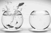 Bezinning: Op zoek naar problemen